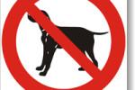 Zákaz vstupu se psem