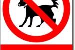 Zákaz vstupu se psy